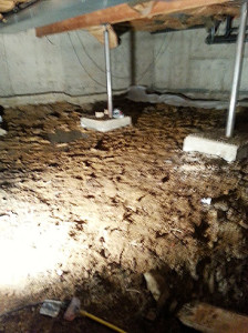 Crawlspace-Pre-Remediation-15