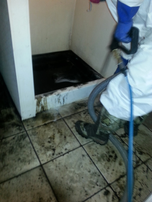 Category 3 Sewage Loss Wrecks Havoc on Denver Home